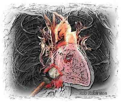 Jesus Heart Pierced