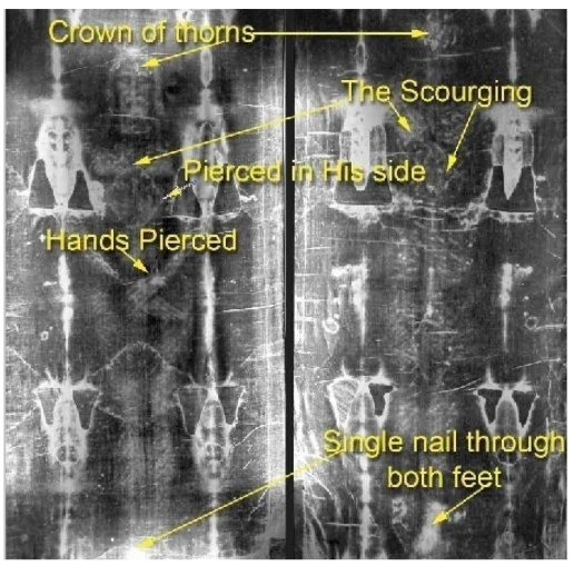Shroud of Turin Notated