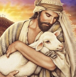 Jesus Sheep-14